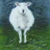 Dartmoor Dolly